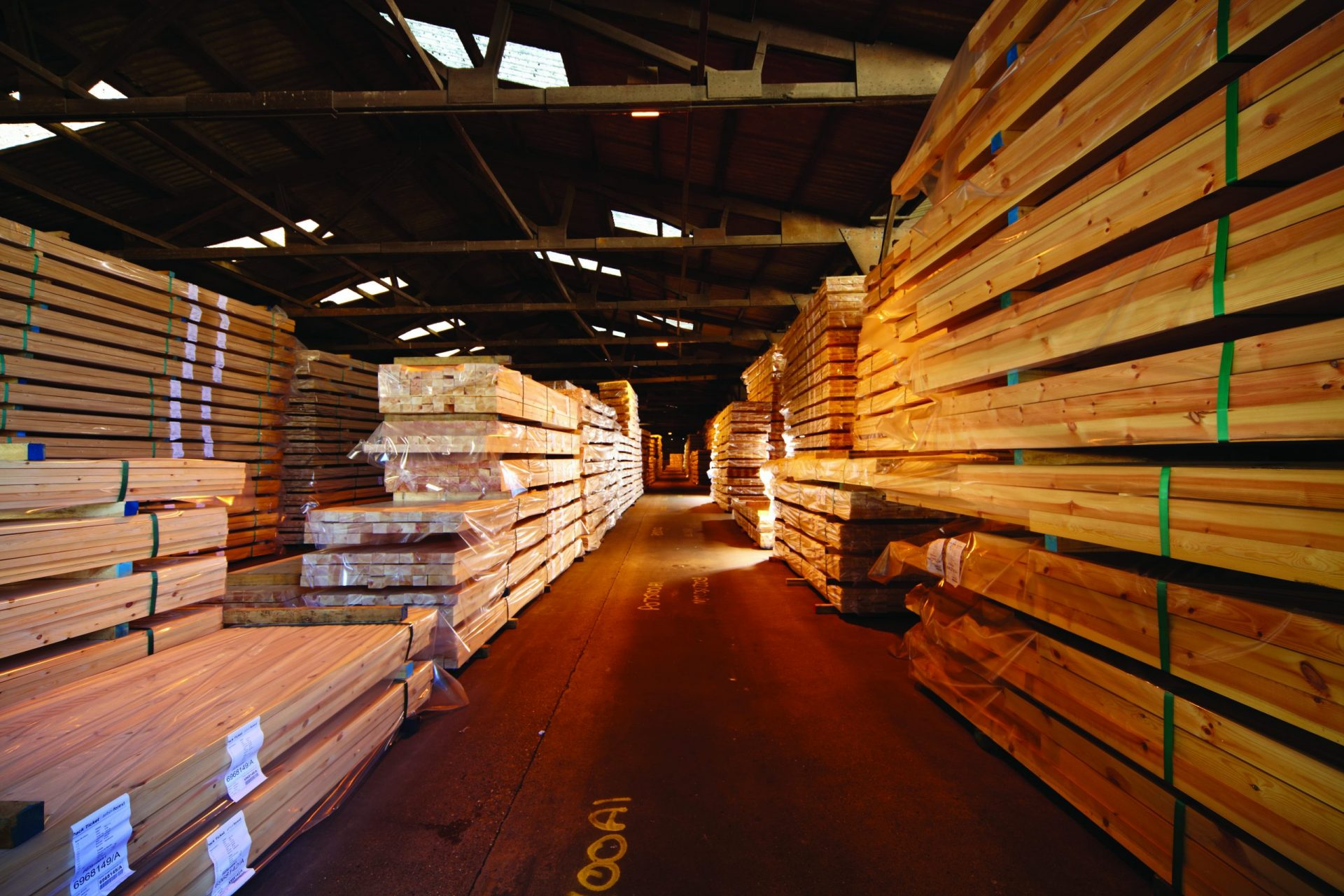 Arbor Forest Products timber